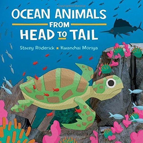 Ocean Animals from Head to Tail by Stacey Roderick.