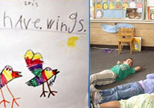 bird study in kindergarten